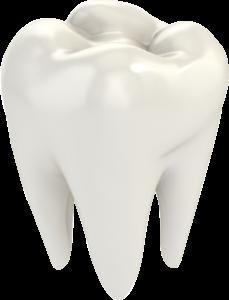 Prima visita dentistica gratis